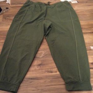 NWT Terra & Sky Size 2X Joggers Olive Green
